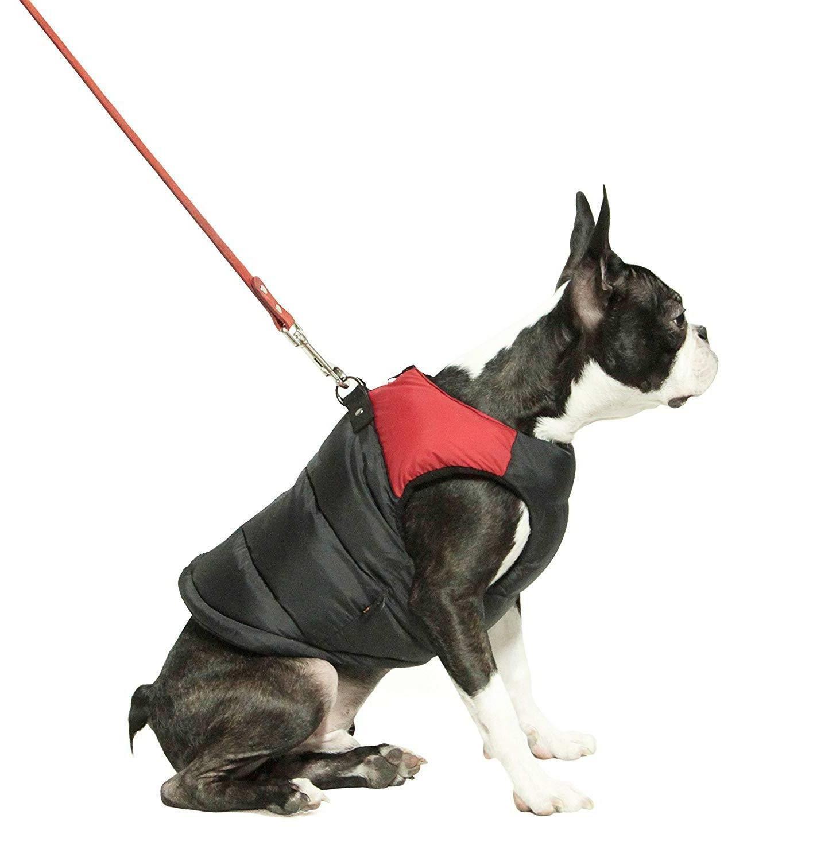 Gooby Padded Dog Coat Leash