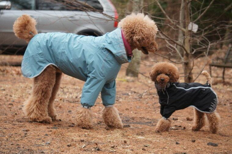 HURTTA RAIN BLOCKER WATERPROOF DOG JACKET COAT RAIN SUIT
